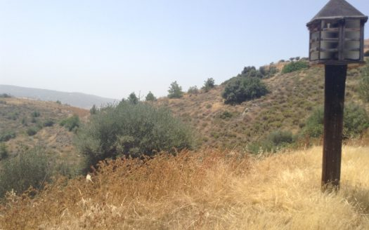 Land for sale in Monagroulli