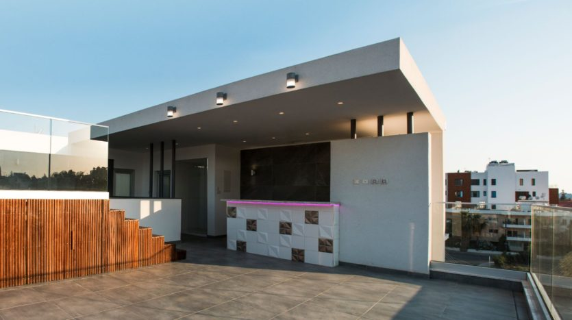 Roof garden / pool bar