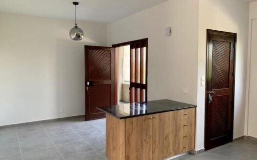 Fully renovated 2 bedroom apartment in the centre