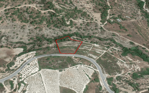 Land for sale in Agios Mamas village