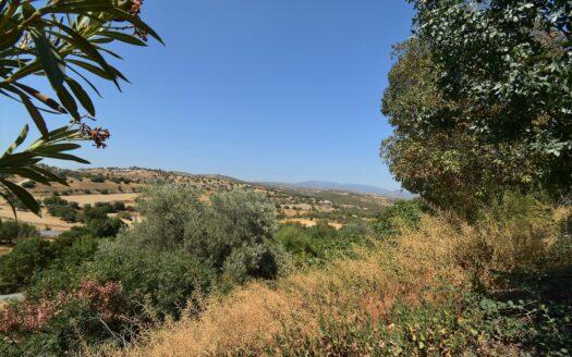 Dora Country Views Plot