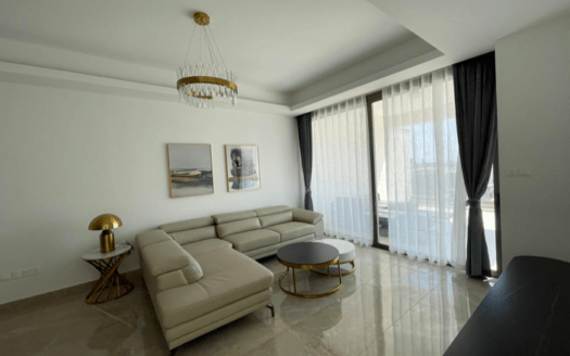 Brand new 3 bedroom penthouse for rent