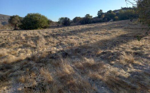 Land for sale in Asgata village