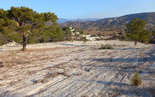 Large land for sale in Asgata