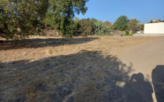 Land for sale in Asgata now available